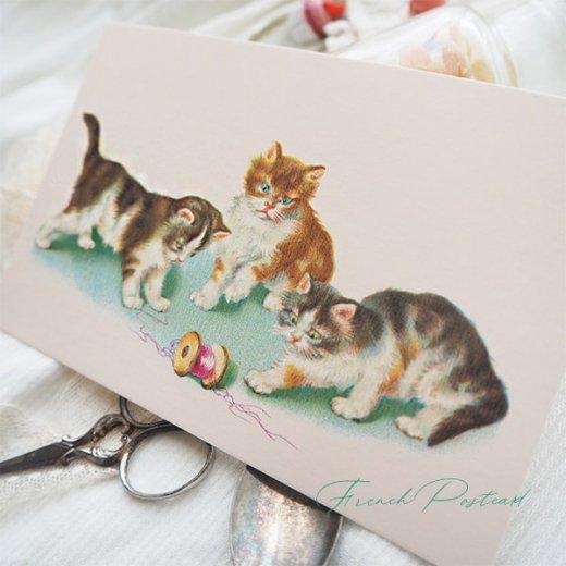 フランス ポストカード  (Vilain chat いたずら猫 子猫)【画像4】