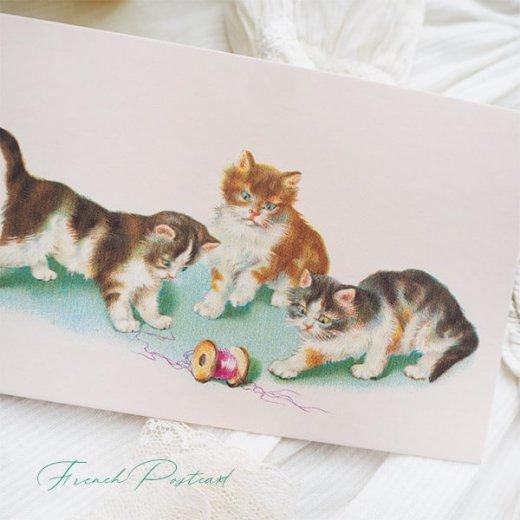 フランス ポストカード  (Vilain chat いたずら猫 子猫)【画像5】