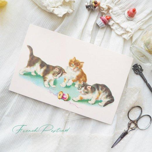 フランス ポストカード  (Vilain chat いたずら猫 子猫)【画像7】