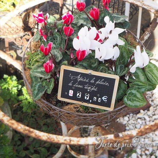 【単品販売】フランス蚤の市より ヴィンテージ パリ マルシェ プライスプレート プライスカード【画像5】