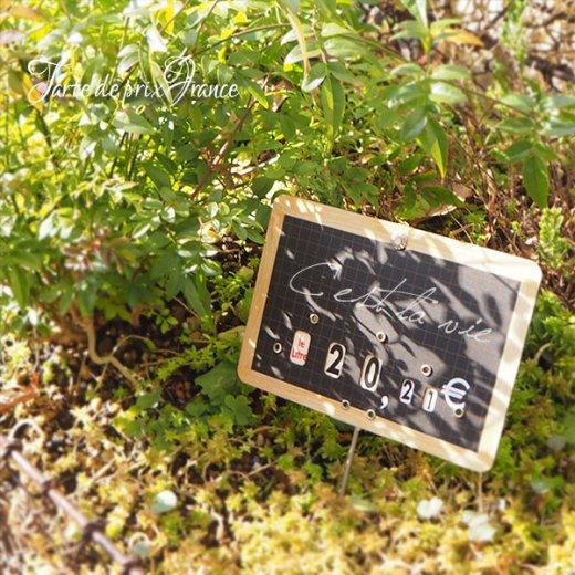 【単品販売】フランス蚤の市より ヴィンテージ パリ マルシェ プライスプレート プライスカード【画像6】