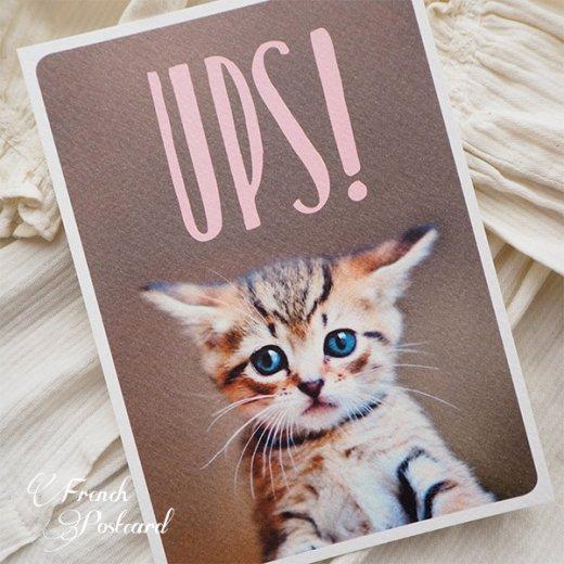 ネコ ポストカード (UPS!)【画像2】