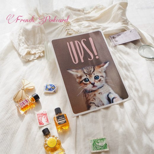 ネコ ポストカード (UPS!)【画像3】