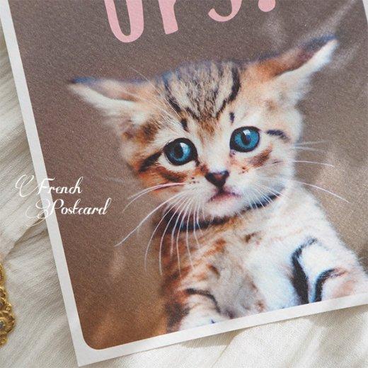 ネコ ポストカード (UPS!)【画像4】