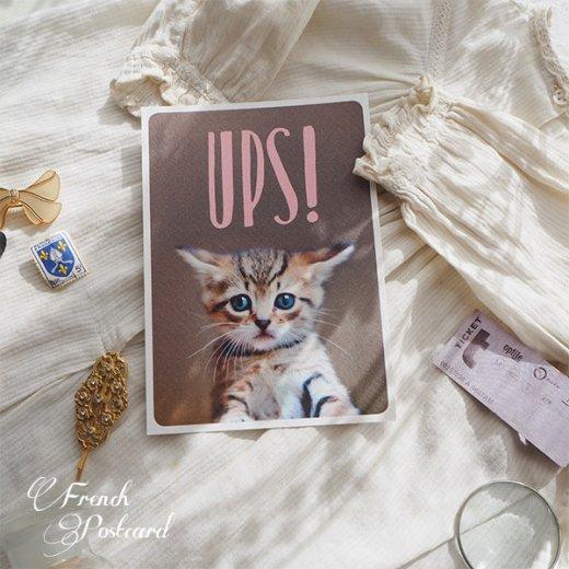 ネコ ポストカード (UPS!)【画像8】