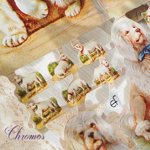 ドイツ クロモス【M】<猫 リボン バラ ひつじ 犬> 【画像5】