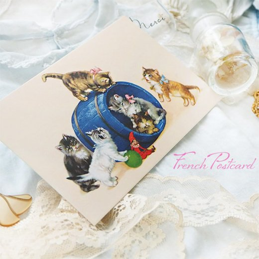 フランス ポストカード  猫 キャット (樽 ネコ Chacun son tour )【画像5】