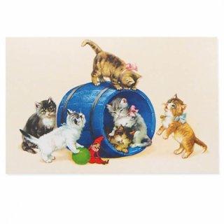 フランス ポストカード  猫 キャット (樽 ネコ Chacun son tour )