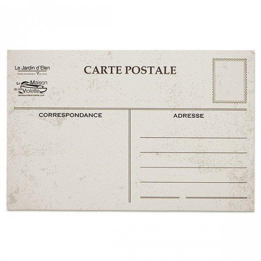 フランス ポストカード スミレ(幸運を呼ぶ  平和の象徴 白い鳩 )【画像8】