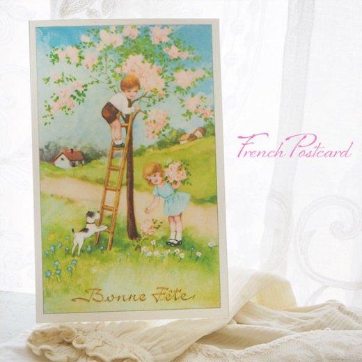 フランス ポストカード 花摘み(記念日お祝い 卒業 入園 春 初夏 Bonne fete E)【画像5】