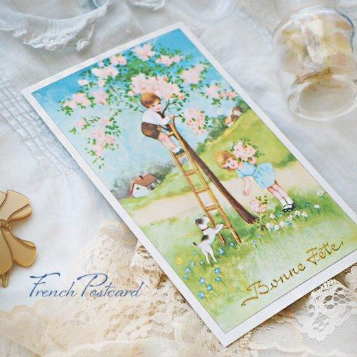 フランス ポストカード 花摘み(記念日お祝い 卒業 入園 春 初夏 Bonne fete E)【画像7】