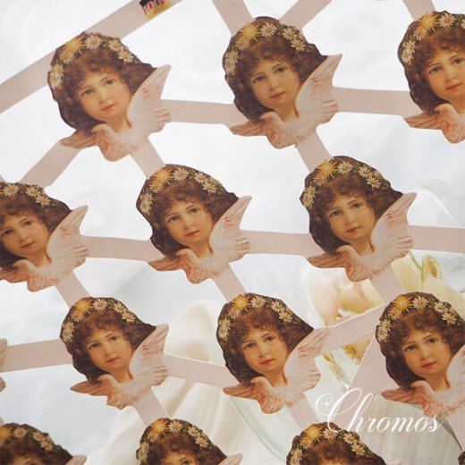 ドイツ クロモス【M】天使 デイジー・ピンク (B-type) 【画像2】