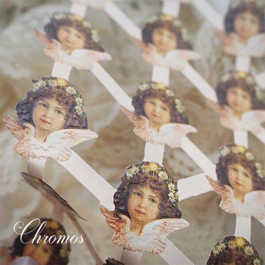ドイツ クロモス【M】天使 デイジー・ピンク (B-type) 【画像5】