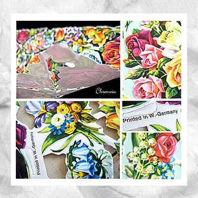 ドイツ クロモス【M】<フラワー バラ パンジー すずらん ビビットカラー>【画像3】