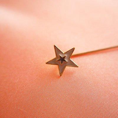 1970's Fashion plate pin(ファッションプレートピン/スター)