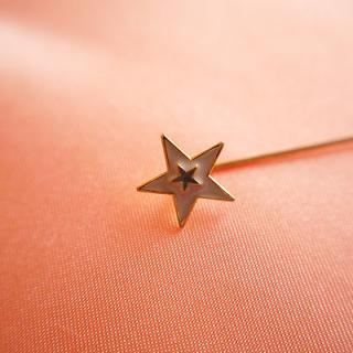 アクセサリー 1970's Fashion plate pin(ファッションプレートピン/スター)