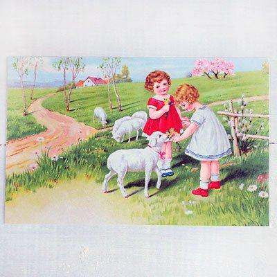 フランスポストカード (Fille et moutons)【画像2】