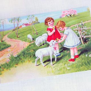 動物 アニマル柄 フランスポストカード (Fille et moutons)