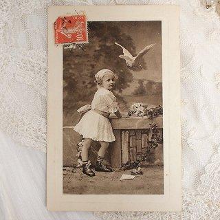 フランス アンティーク ポストカード【oiseau blanc】