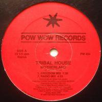 Tribal House / Motherland