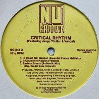 Critical Rhythm / It Could Not Happen