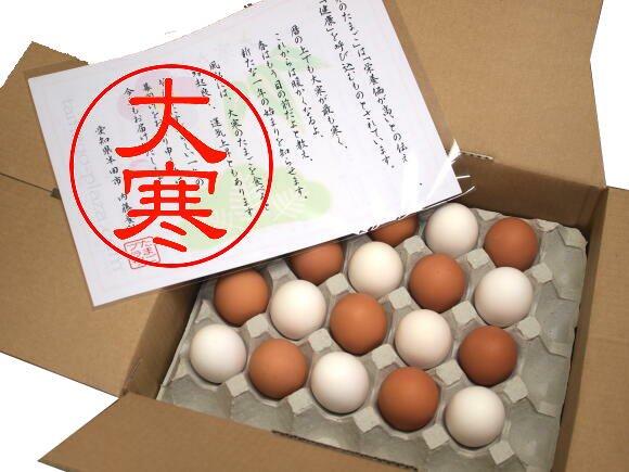 大寒たまご / 紅白・寿40個入り (送料込み)