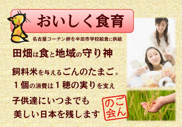 純系名古屋コーチン卵 / ごんのたまご 20個入り (送料込み)