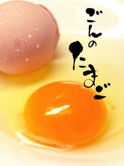 純系名古屋コーチン卵 / ごんのたまご 30個入り・化粧箱 (送料込み)