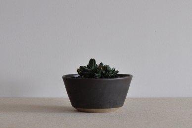 Planter (ガステリア 子宝錦) 016 - Victoria Morris (ヴィクトリア・モリス)