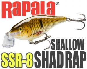 Rapala /Shallow Shad RAP 【SSR-8】 【限定復刻】