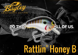 Bagley/Rattlin' HONEY B1