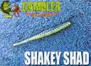 GAMBLER/SHAKEY SHAD