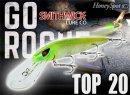 SMITHWICK/Top 20 Rogue