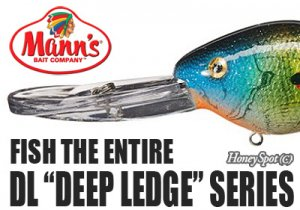 Mann's/Deep Ledge Series 【DL20/DL30】