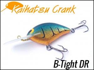 開発クランク/B-Tight DR