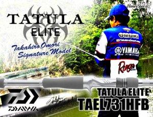 DAIWA/TATULA ELITE 731HFB 【7'3