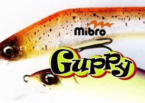 mibro/Guppy グッピー