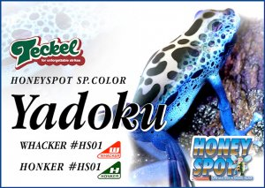 Teckel lure/ワッカー・ホンカー HONEYSPOT SP. COLOR  【Yadoku】
