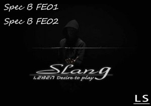 DESIGNO LEBEN デジーノレーベン/ SLang スラング Spec B