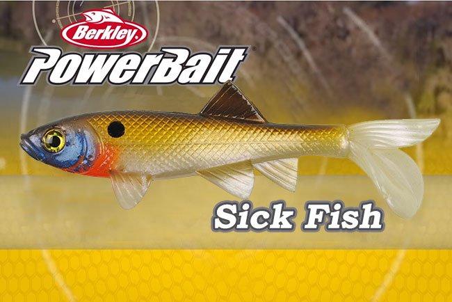 Berkley Powerbait Sick Fish 4in Clear Bream