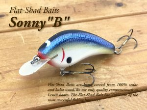<img class='new_mark_img1' src='https://img.shop-pro.jp/img/new/icons55.gif' style='border:none;display:inline;margin:0px;padding:0px;width:auto;' />Flat Shad Baits/Sonny B