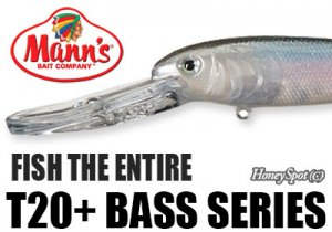 Mann's/T20+ Bass Series