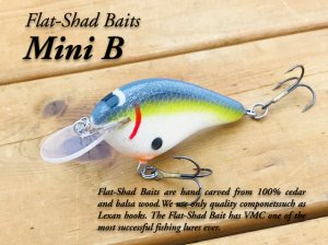 <img class='new_mark_img1' src='https://img.shop-pro.jp/img/new/icons25.gif' style='border:none;display:inline;margin:0px;padding:0px;width:auto;' />Flat Shad Baits/Mini B