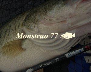 ツララ/モンストロ 77