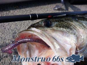 ツララ/モンストロ 66s