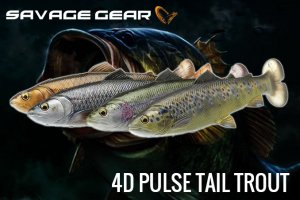 <img class='new_mark_img1' src='https://img.shop-pro.jp/img/new/icons15.gif' style='border:none;display:inline;margin:0px;padding:0px;width:auto;' />Savage Gear/4D PULSE TAIL TROUT