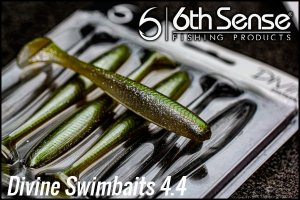 6th Sense fishing/Divine Swimbaits 4.4""