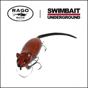 SU×Rago Baits/RAGO ROACH 2 [JAPAN EXCLUSIVE]