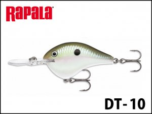 ラパラ/DT-10