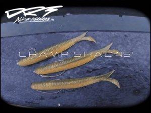 DRT/CRAMP SHAD 4.5 inch